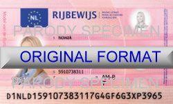 free alabama drivers license template