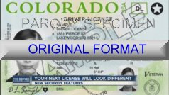 Large Colorado Fake ID Template