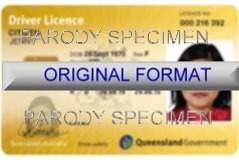Queensland Fake ID
