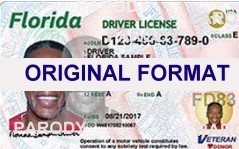 Florida Driver License scannable fake id fake identity fake driver license id Florida canada