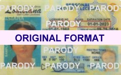fake id louisiana with hologram scannable with security bar code