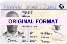 VIRGINIA DRIVER LICENSE ORIGINAL FORMAT, DESIGN SPECIFICATIONS, NOVELTY SECURITY CARD PROFILES, IDENTITY, NEW SOFTWARE ID SOFTWARE