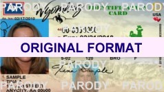 WYOMING FAKE DRIVING LICENSE WYOMING SCANNABLE FAKE WYOMING DRIVING LICENSE WITH HOLOGRAMS